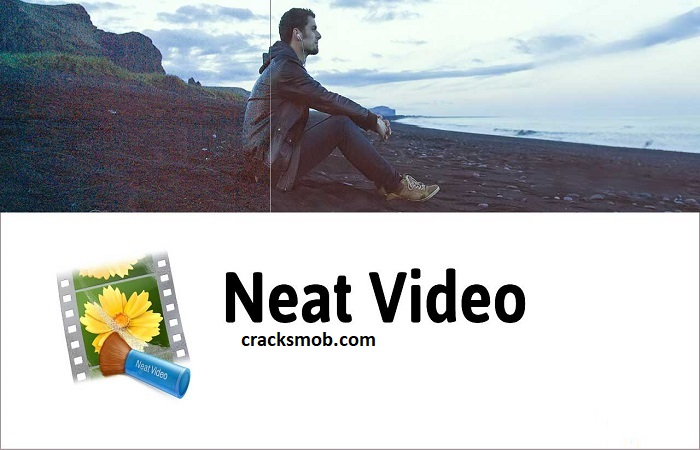 Neat Video Crack